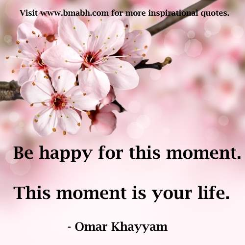 life happiness quotes image-Be happy for this moment. This moment is your life
