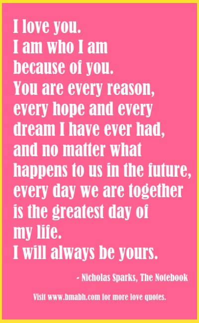 The Notebook Quotes image - I love you. I am who I am because of you