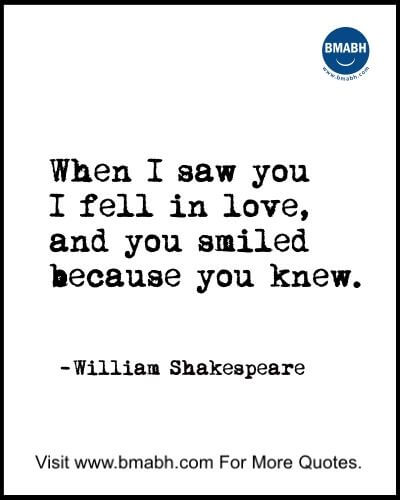 Love At First Sight Quotes-When I saw you I fell in love, and you smiled because you knew
