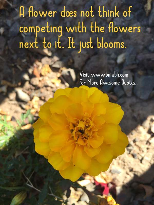 A flower does not think of competing with the flowers next to it. It just blooms