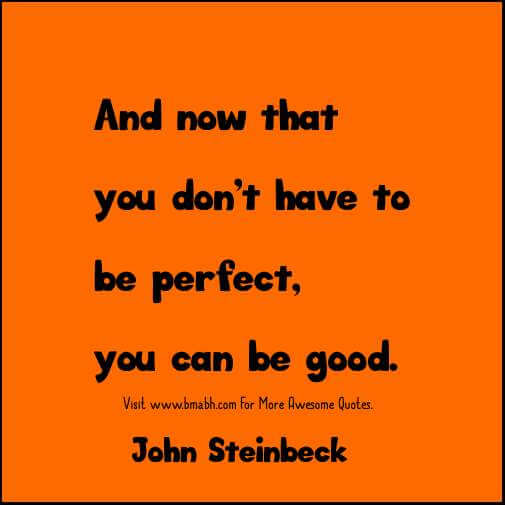 now that you don't have to be perfect, you can be good